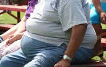 Co sprzyja otyłości?