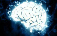 Młody mózg
